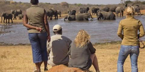 6-Day Affordable Victoria Falls and Hwange Experience