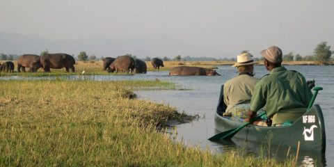 4-Day Mana Pools Shoreline Canoe Safari Zimbabwe