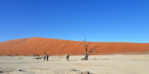 16-Day Namibia Self-Drive Adventure