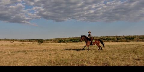 5-Day Game Drives and Horse-Riding in Mara and Nakuru