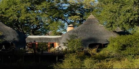 2-Day Hoyo Hoyo Safari Lodge -1 Night
