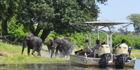 4-Day Ichingo Chobe River Lodge
