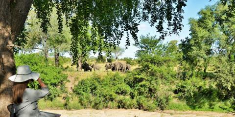 4-Day Imbali Safari Lodge - Kruger National Park