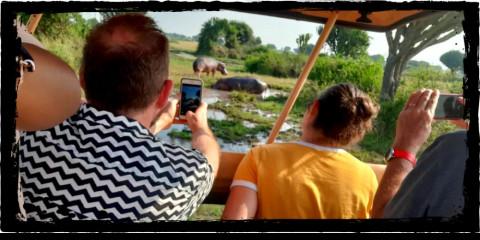 6-Day Kibale & Queen Elizabeth National Parks Safari
