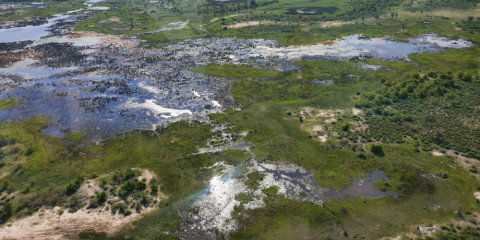 5-Day Okavango Delta Luxury Safari