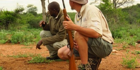 7-Day Privately Guided Greater Kruger Park Safari