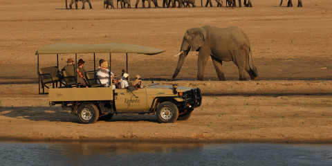 9-Day Zambia South Luangwa Safari