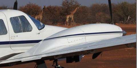 6-Day Botswana Kalahari Private Flying Safari