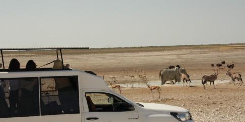 10-Day Northern Namibia, Coast & Sosusvlei Camping Safari