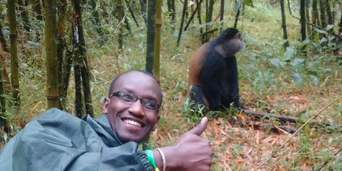 1-Day The Golden Monkey Trekking