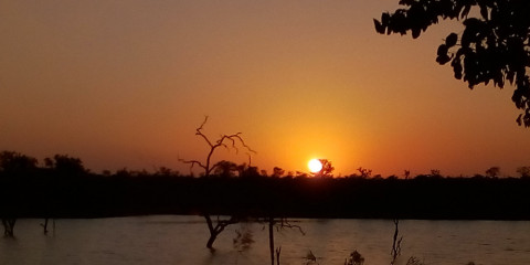 3-Day Kruger Park & Panorama Route Adventure