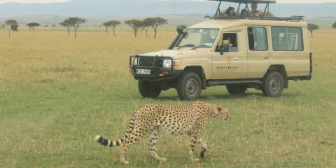 3-Day Luxury Camping Safari in 4x4 Jeep
