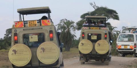 6-Day Amboseli, Naivasha, Nakuru & Masai Mara Safari