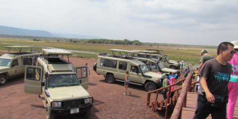 7-Day Luxury Wildlife Safari Adventure to Serengeti NP