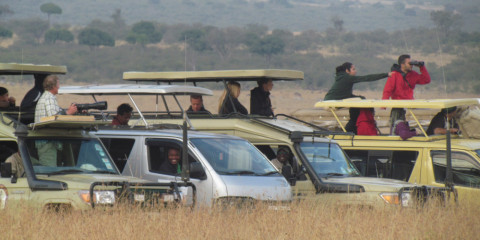 13-Day Lake Nakuru Masai Mara Serengeti & Zanzibar Island