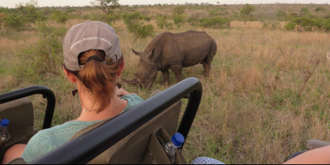 4-Day Greater Kruger Safari with Chacma Bush Camp