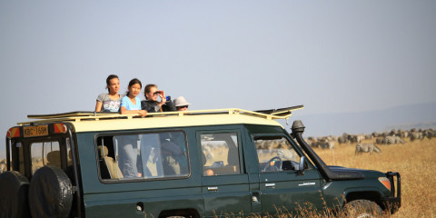 6-Day Magical Kenya Safari -Amboseli, Nakuru, Masai Mara