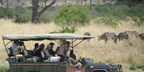 6-Day Drive in Fly out Safari to Selous, Mikumi & Ruaha