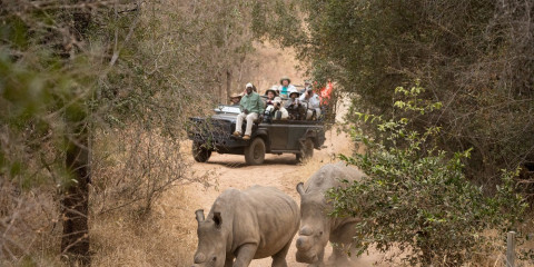 3-Day Shiduli Private Game Lodge - Greater Kruger