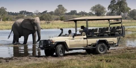 7-Day Botswana Luxury Safari