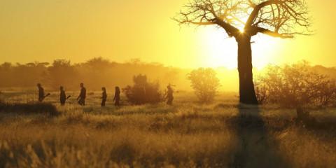 8-Day Remarkable Ruaha