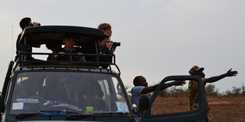 8-Day Murchison Falls and Kidepo Valley Group Safari