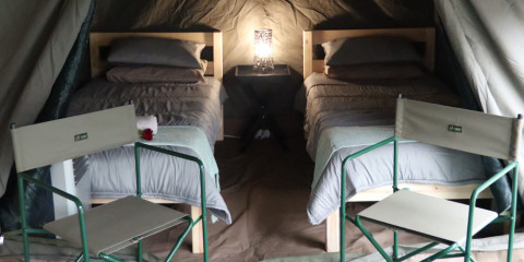 3-Day Affordable Luxury Tented Kruger Safari with Aircon