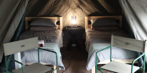 4-Day Affordable Glamping Kruger Safari with Air-Con