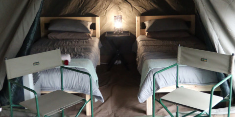 5-Day Affordable Glamping Kruger Safari with Air-Con