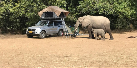 8-Day Family 4x4 Safari - Mana Pools and Chitake Springs