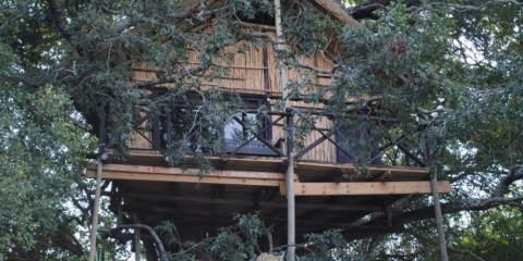 5-Day Lodge-Treehouse Safari