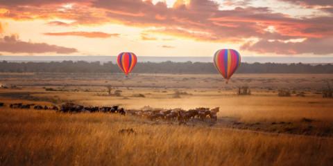 3-Day Fly-in Safari Masai Mara Comfort Plus