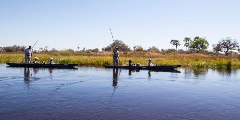 7-Day Fully Inclusive Botswana Beauty: Chobe & Delta