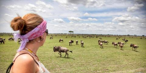 4-Day 4-Day Amazing Wildlife Safari