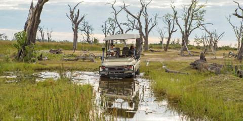 7-Day Best of Okavango Delta Safari