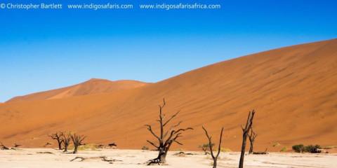 10-Day Wonders of Namibia Nat Geo Overland Safari