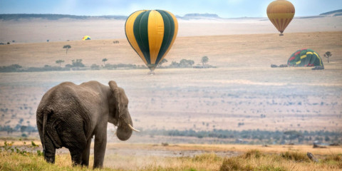13-Day Namibian Discovery