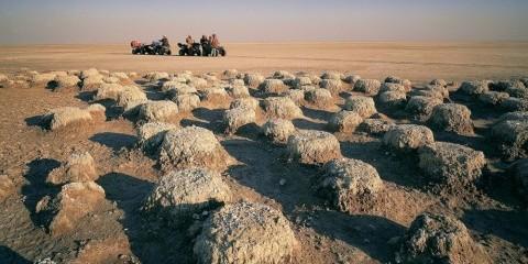 3-Day Meerkat Mania Salt Pan Sleepout & Quad Bike Safari