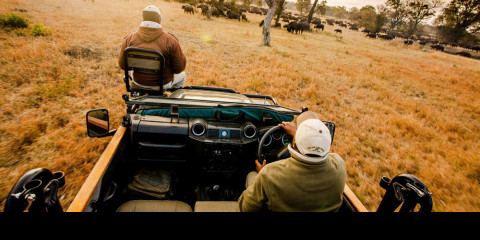 5-Day Greater Kruger Safari Experience