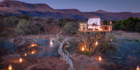 9-Day South Africa Safari + Cape Town + Winelands
