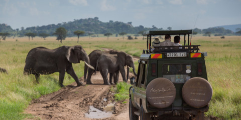 4-Day Experience the Migration in the Heart of the Mara