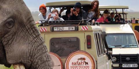 4-Day Serengeti and Ngorongoro Crater Camping Safari