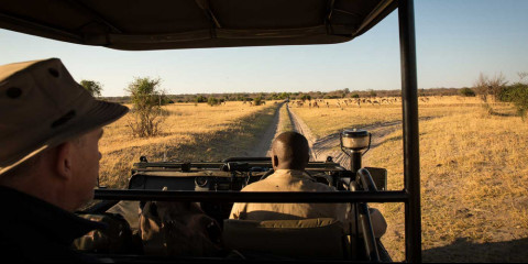 5-Day Greater Kruger Safari Escape