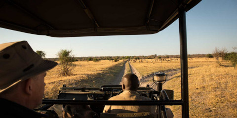 11-Day South Africa Family Lux Safari