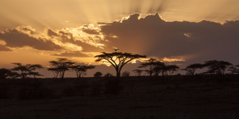 18-Day Southern Africa Escapades
