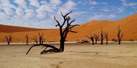 21-Day Namibia Botswana Southern Circle