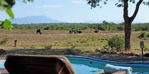 4-Day Tangala Safari Camp - Tented Camp