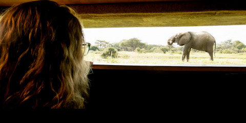 7-Day Classic Zimbabwe Adventure Safari