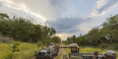 5-Day Greater Kruger Safari with Chapungu Camp