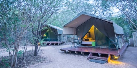 3-Day Sabi Sand Safari in a Luxury Tented Camp